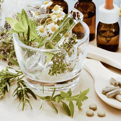 Plantas en Cápsulas y en Extractos